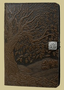Kindle cover by Oberon Design